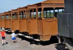 Subirse a un tren para ver los volcanes con niños