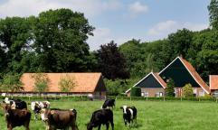 Vacaciones con niños en el este de Holanda